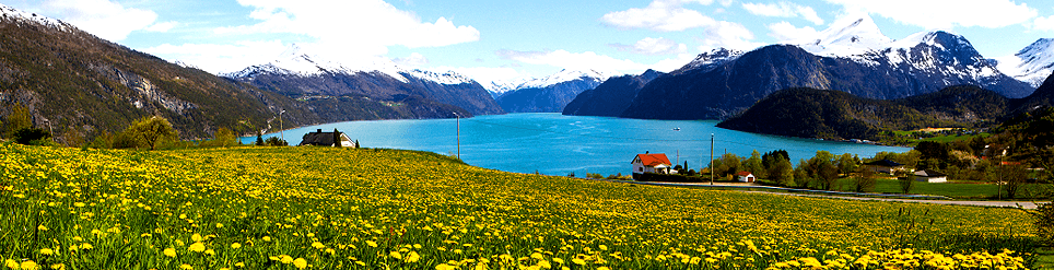 rental car Alesund